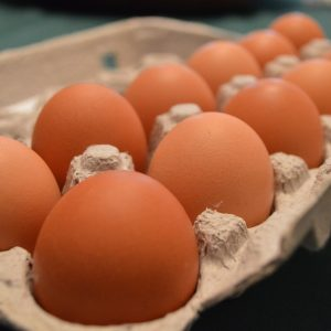 Fresh Eggs from Ryan Family Farm